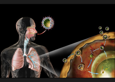 FLUE INFECTION - Digital 2009 - Focus magazine, Gruner+Jahr/Mondadori