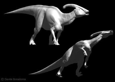 "PARASAUROLOPHUS - ""Dinosaurs in the Flesh"" traveling exhibition - ClayTools - 2012 - Scientific supervisor: Simone Maganuco"