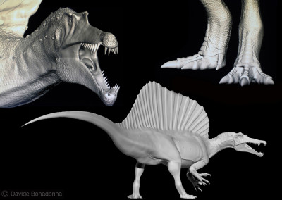 "SPINOSAURUS - ""Dinosaurs in the Flesh"" traveling exhibition - ClayTools - 2010 - Scientific supervisor: Simone Maganuco"