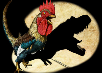 CHICKENSAURUS - Focus Magazine - June 2012 - Tempera and digital - 2012 - Scientific supervisor: Simone Maganuco