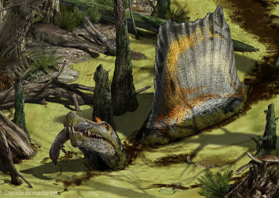 SPINOSAURUS SWAMP - Focus Junior Magazine (Italy) - January 2015 - Digital - 2014 -  Scientific supervisor: Simone Maganuco