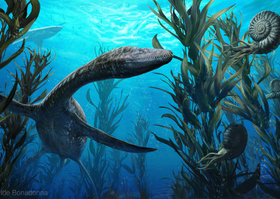 PLESIOSAURUS AND AMMONITE - Garden of the Gods Visitor & Nature Center (Colorado Springs, Colorado, USA) - Digital - 2014