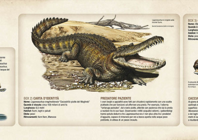 "RIVER PREDATORS - National Geographic exhibition ""Spinosaurus - Lost Giants of Cretaceous"" - Digital - 2014 - Scientific supervisor: Nizar Ibrahim and Simone Maganuco Design: Andrea Pirondini"